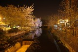 River Gade Kings Langley at night April 2011
