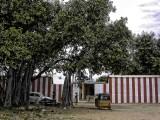 01 -Srinivasar temple entrance.jpg