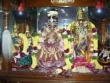 Sri Rukmani Thayar - Sri Paandava Thoothap Perumal Navarathiri Uthsavam - Thiruvankadamudayan Thirukolam