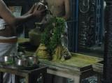 Sri Alwar Tirumanjanam with Perumal Tiruthuzhai.JPG