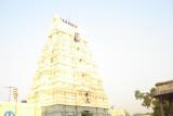 12 - Thinnanoor Raja Gopuram.JPG
