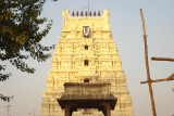 13 - Thinnanoor Raja Gopuram.JPG