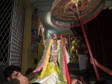 Gudhirai vahanam and vedupari