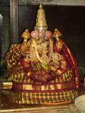 Perumal Kovil Dhavana Uthsavam Day 2 and 3