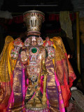 Thirunindravur Brahmothsavam Day6 - Evening - Yanai Vahanam