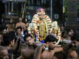 Thiruvallikeni Sri Parthasarathy Swamy @ Siriya (small) Thiruther