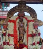 Perumala Kovil Brahmothsavam - Sri Perarulalan @ Thanga Chapparam Day1 Morning (Album1) - Part2