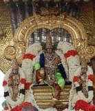 Perumal Kovil Brahmothsavam - Sri Perarulalan @ Sesha Vahanam - Paramapatha Nathan Thirukolam