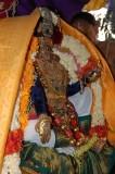 Perumal Kovil Brahmothsavam - Sri Perarulalan @ Pallakku - Nachiyar Thirukolam