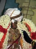 Perumal Kovil Brahmothsavam - Sri Perarulalan @ Gudhirai Vahanam