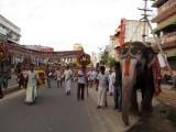 Perumal Kovil Brahmothsavam - Sri Perarulalan @ Aal Mel Pallakku