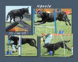 Nelling 8x10 Maddie 2
