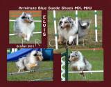 Sullivan 8x10 Elvis