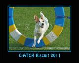 Hughes 8x10 Biscuit poster SGR_4671