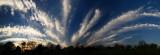 Cirro Cumulus Wide Panorama