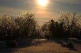 Cold Winter Sun & Ice Storm