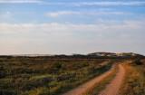 Near Råbjerg Mile, North-Jutland
