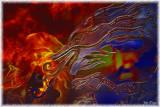 Fire Eating Dragon by John Muzzio - May 2011