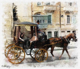 Horse Drawn Carriage by Chris Duffy - July 2011