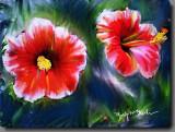 Twin  Hawaiian Hibiscus