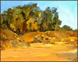 Jelly Bowl Beach
