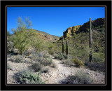 Arizona Hikes and Drives - Chapter 6 - Hackberry Springs Trail