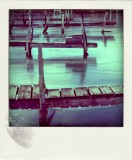 Poladroid