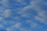 Light clouds / Légers nuages