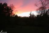 At dusk / Au crépuscule
