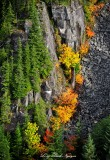 colors of fall in Cascades