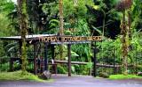 Hawaii Tropical Botanical Garden,  Hawaii