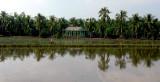 biking along rice fields