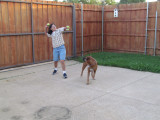Play time w/ Paisley