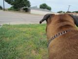 Checking out the Neighborhood