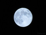Blue Moon - 2nd time in one month