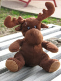 Moose - Moose    8 January 2008