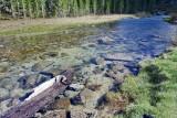 Rock Creek Stream  IMG_8444_resize.JPG