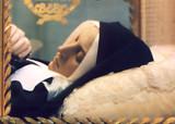 Visit  ...The Incorrupt St Bernadette Soubirous