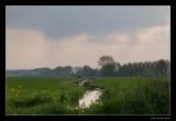 2329 Dutch landscape Groene Jonker