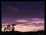4902 Kootwijkerzand sunset