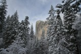 Yosemite Valley Winter Color