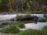 River Merced shores. #2577