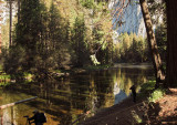 Merced River.  A more secluded area. Reflections vs shadows. #2774