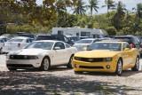 Florida common cars