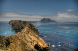 7/27/11- Anacapa Island, Channel Islands, California