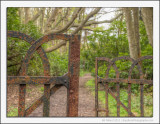 The Old Gate in the Woods