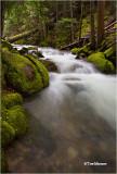 Beauty Bay Creek