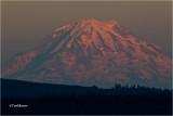 Mt. Rainer (Sunset)