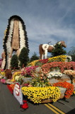 Rose Parade 2008,  National  Award