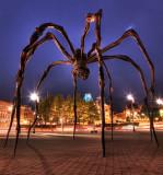 Ottawa City 2011